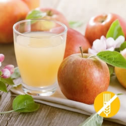 SANS GLUTEN Boisson hyperprotéinée Pomme