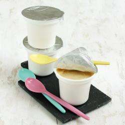 Crème dessert vanille hyperprotéinée en coupelle UHT Lot de 3